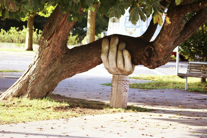 Large hand supporting a tree branch, the way online therapy in Manchester can help you